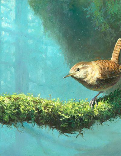 Chochín común / Winter wren / Troglodytes troglodytes – Pintura al óleo sobre tabla de madera / Oil painting on wood – © Lucía Gómez Serra