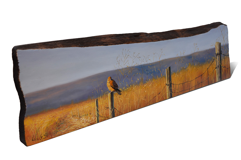 Cernícalo vulgar / Common kestrel / Falco tinnunculus – Pintura sobre madera de cerezo / painting on cherrywood -  84 x 20,5x 3cm - © Lucía Gómez Serra - PVP: 600€