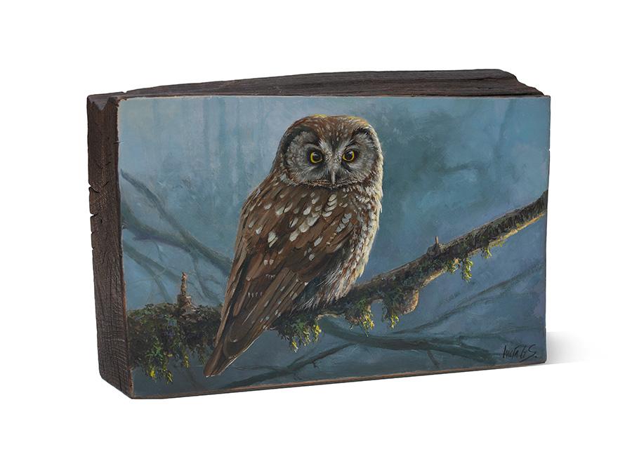 Mochuelo boreal / Tengmalm's owl / Aegolius funereus - Pintura al óleo sobre tabla de madera de haya / Oil painting on beech wood - 26 x 16,5 x6,5 cm © Lucía Gómez Serra - PVP: 400 €