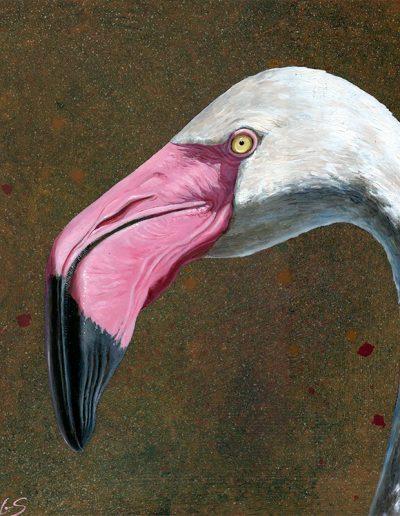 Flamenco común / Greater flamingo / Phoenicopterus roseus – Óleo sobre tabla de madera y bastidor 3D / Oil painting on wood – 30,2 x 30,2 x 3,8 cm -© Lucía Gómez Serra - PVP: 350€