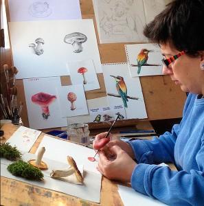 Ilustración naturalista Lucía Gómez Serra