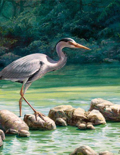 Garza real / Grey heron / Ardea cinerea – Acrílico sobre lienzo y bastidor 3D / Acrylic painting on canvas – 30,2 x 30,2 x 3,9 cm - © Lucía Gómez Serra - PVP: Consultar