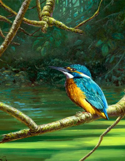 Martín pescador común / Common kingfisher / Alcedo atthis – Acrílico sobre lienzo y bastidor 3D / Acrylic painting on canvas – 30,2 x 30,2 x 3,9 cm -© Lucía Gómez Serra - PVP: Consultar