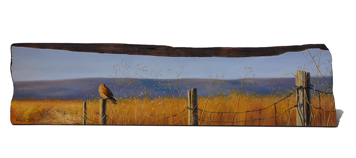 Cernícalo vulgar / Common kestrel / Falco tinnunculus – Pintura sobre madera de cerezo / painting on cherrywood - 84x20,5x3cm - © Lucía Gómez Serra