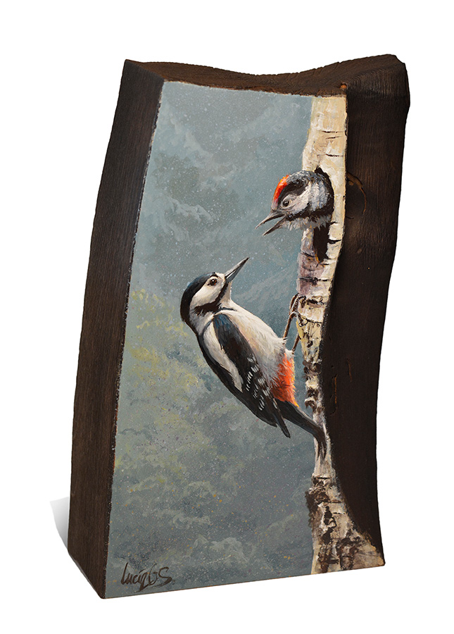 Pico picapinos / Great spotted woodpecker / Dendrocopos major - Sobre madera de cerezo / painting on cherrywood -14x23,5x6cm – © Lucía Gómez Serra - Vendido