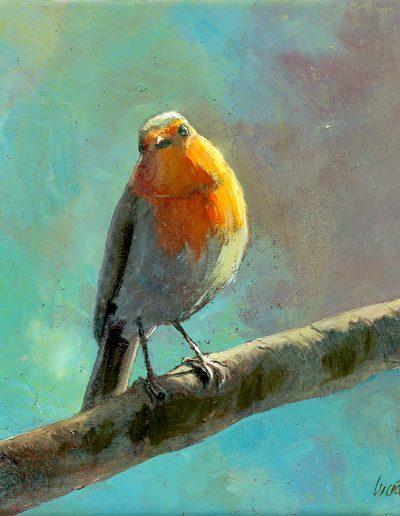 Petirrojo europeo / Robin / Erithacus rubecula – Óleo sobre lienzo y bastidor 3D / Oil painting on canvas – 15 x 15 x 3,5 cm -© Lucía Gómez Serra - PVP: Consultar